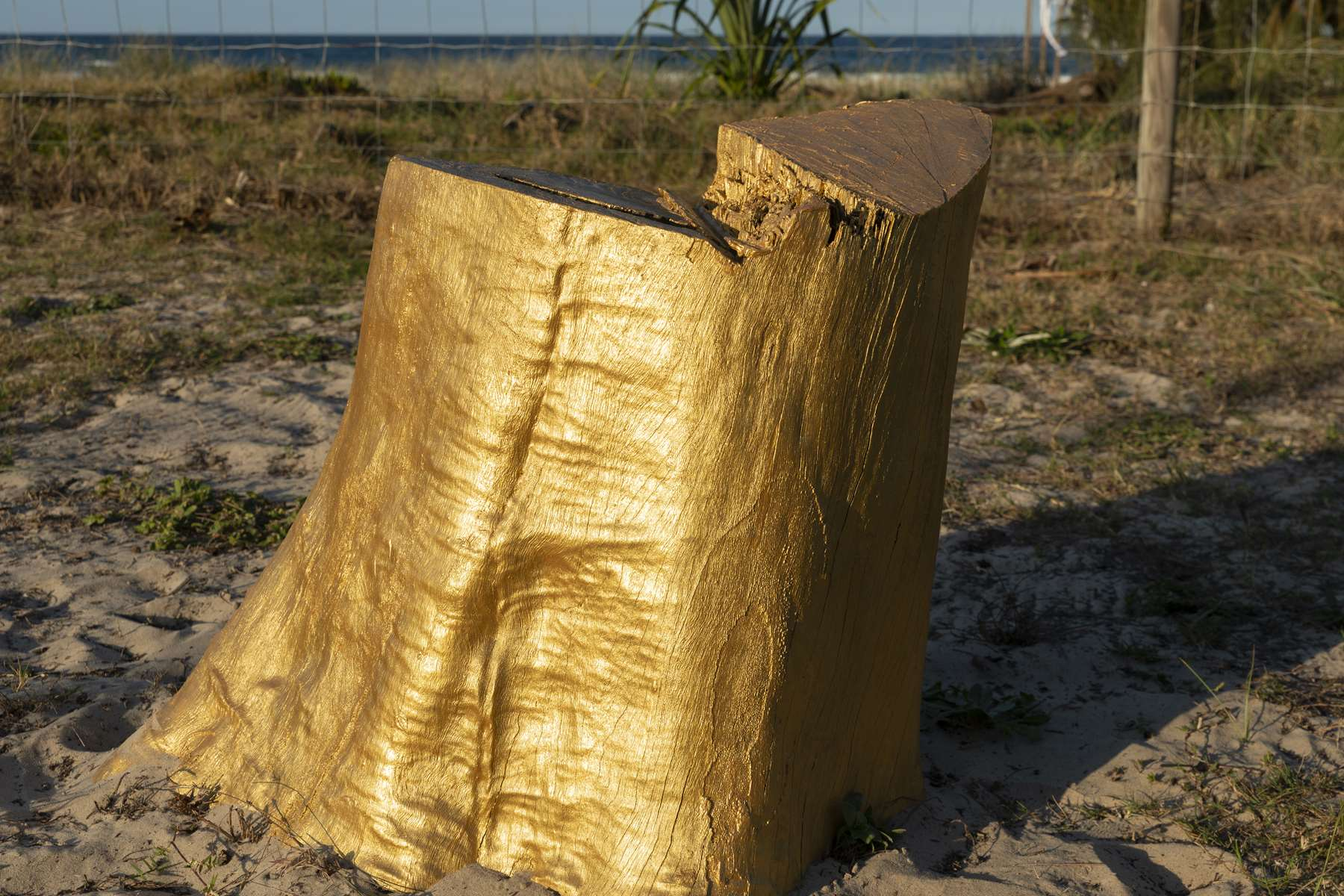 NGARA TREE, Swell Sculpture Festival, Gold Coast, Australia, 2018. Installation by Karl Chilcott.